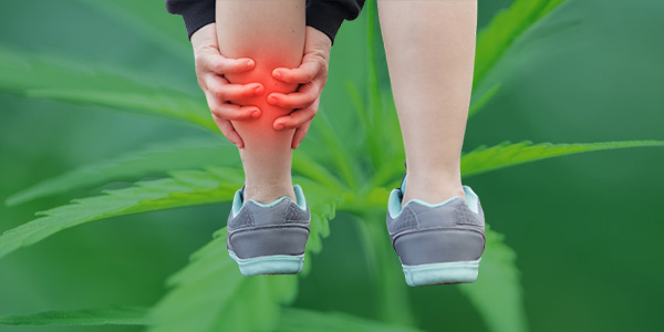 How Cannabidol Works with Leg Cramps