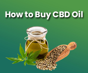 How to Buy CBD Oil?
